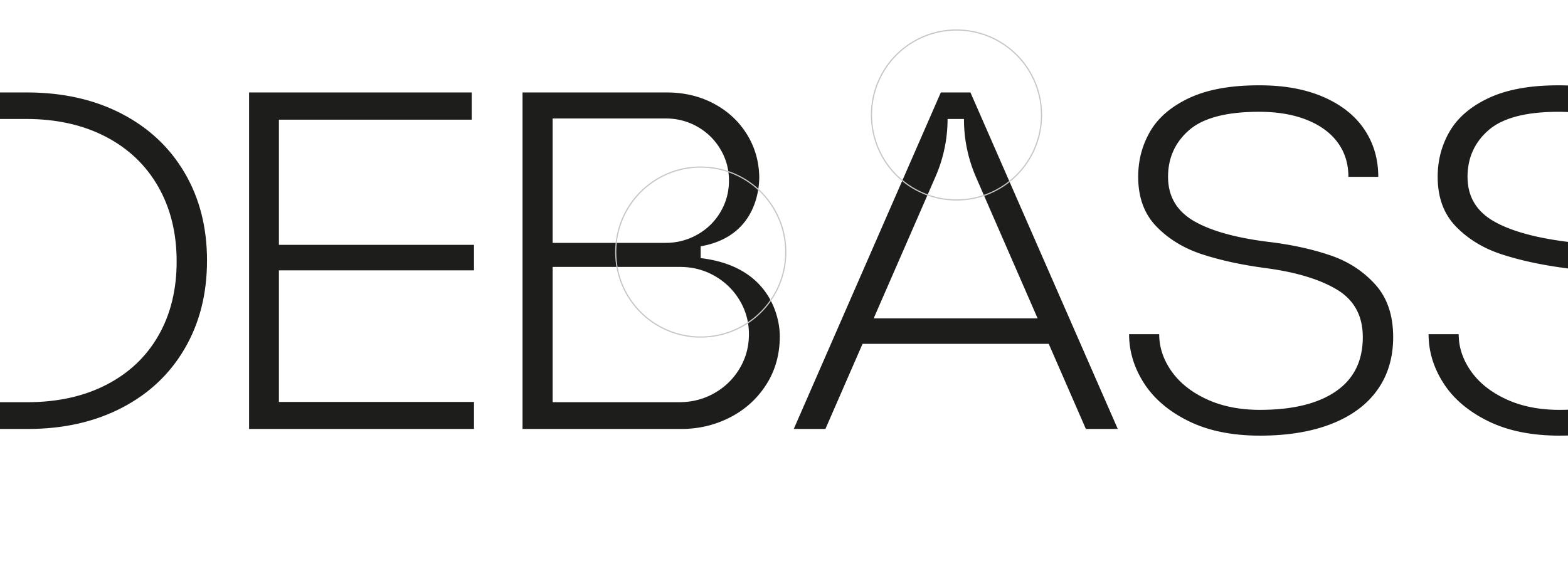 DEBASS—Presentazione-progetto_04